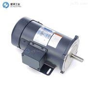 LEESON直流电机C系列C42D17FK6A 098008.00