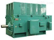 YR.YRKS.YRKK系列1高压电机