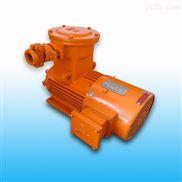 YBBP系列隔爆型变频调速电机