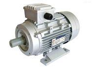 意大利RAEL电机TFP104-000